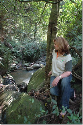 Lynne In The Rainforest