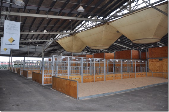 Beef Cattle Sheds