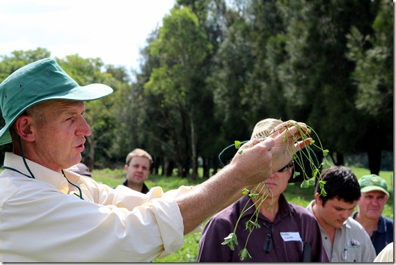 Dr Neil Moss and Dr Richard Eckard share the benefits of planting legume pastures with Field Day particpants
