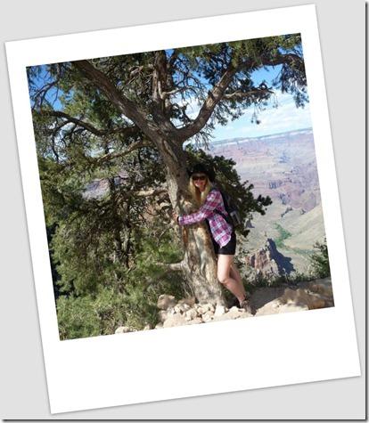 Grand Canyon tree hug