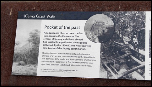 Kiama Coastal Walk  (16)