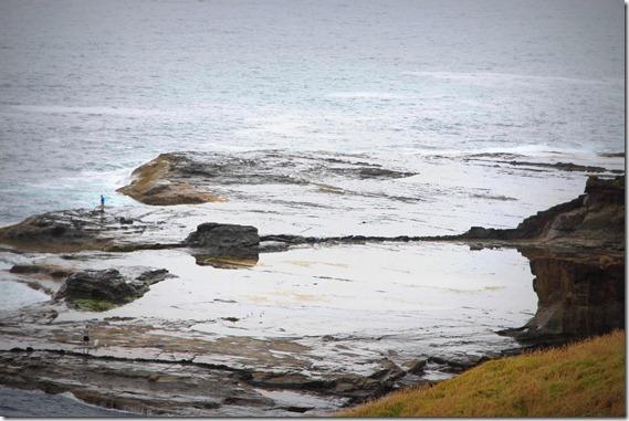 Kiama Coastal Walk  (19)