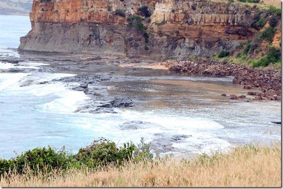 Kiama Coastal Walk  (20)