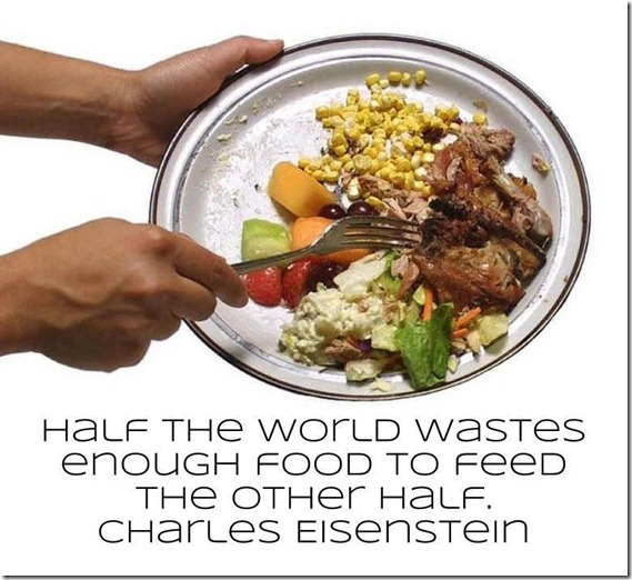 Half the world wastes enough food to feel the other half