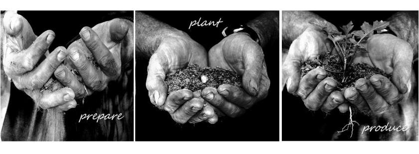 Prepare Plant Produce