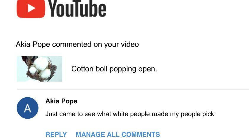 Cotton Boll opening quote.jpg