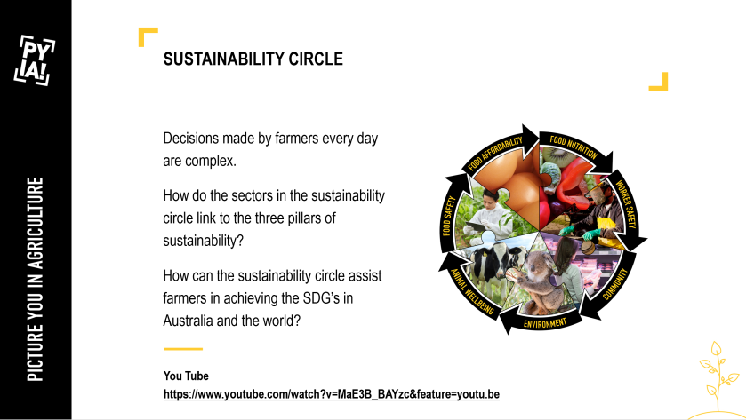 TAP Sustainability Circle